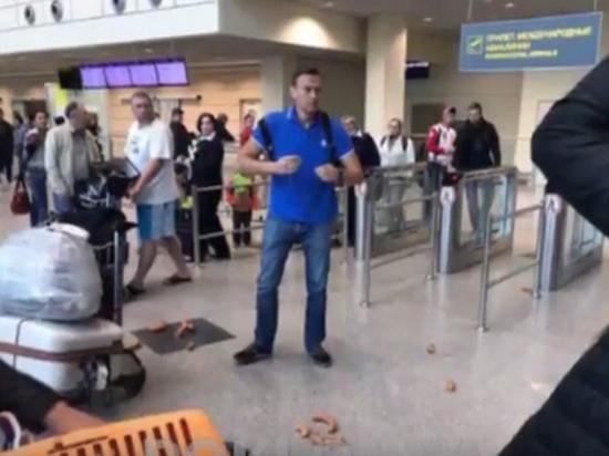 Навальный пережил сосисочную атаку в аэропорту Домодедово