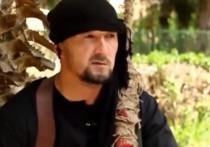 ВКС уничтожили экс-главу таджикского ОМОНа, дослужившегося до «министра войны» ИГ