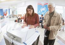 Выборы в Москве 2017: самые интересные голосования по районам