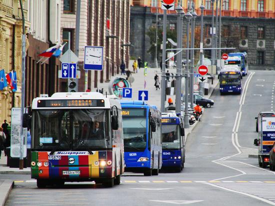 Общественники предложили разрешить водителям объезжать автобус через сплошную