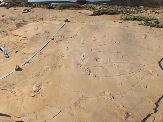 Удивительная находка палеонтологов: человечество оказалось на 2 миллиона лет старше