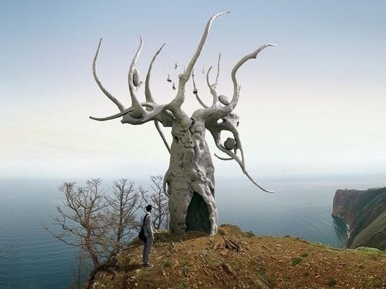 Островитяне считают, что для начала нужно убрать мусор, а потом уже устанавливать скульптуры