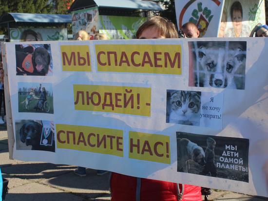 Закон нужен сейчас: омичи вышли на митинг в защиту животных