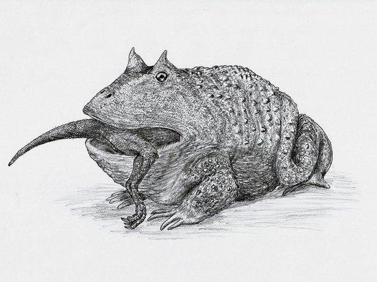 Древняя гигантская лягушка оказалась пожирательницей динозавров