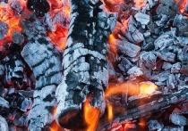 Житель Петербурга придумал мангал, который является одновременно углями и шампурами