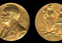 Два российских ученых — физик-теоретик Рашид Сюняев и химик Георгий Шульпин — названы в числе возможных претендентов на получение Нобелевской премии в 2017 году