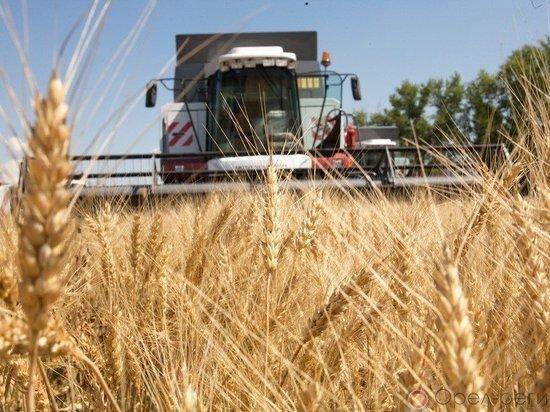 Почему Казахстан, имея огромные аграрные ресурсы, покупает столько продовольствия?