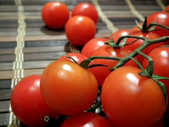 Отделались помидорами: турецкие томаты вернутся в Россию через пару дней