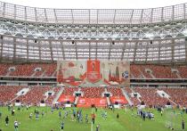 Стадионы ЧМ-2018 в России: успеют ли построить в срок