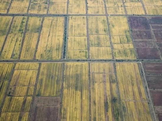 Тысячи россиян смогут получить бесплатную землю после законодательных поправок в Приморье