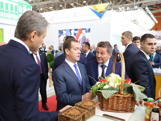 Дмитрий Медведев об успехах волгоградцев в АПК: «Так держать, удачи!»