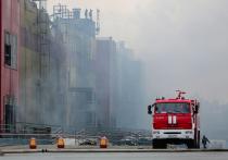 Экологи о пожаре на рынке