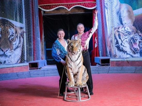 Представители знаменитой цирковой династии привезли в Оренбург «Великий русский цирк»