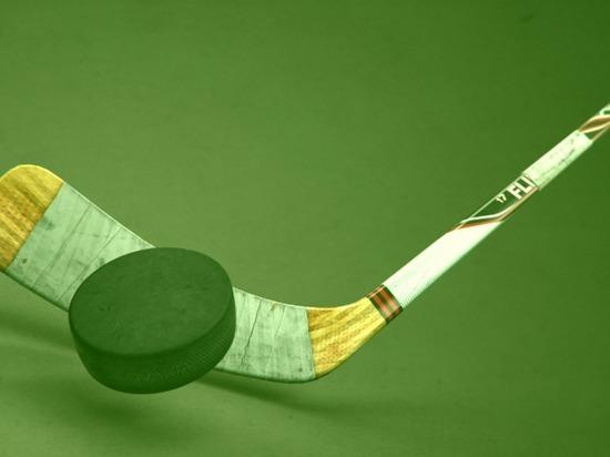 В Красноярске проведут студенческий турнир по хоккею