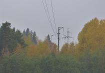 Природоохранная прокуратура Карелии потребовала у руководства «Кивача» рубить свой заповедный лес