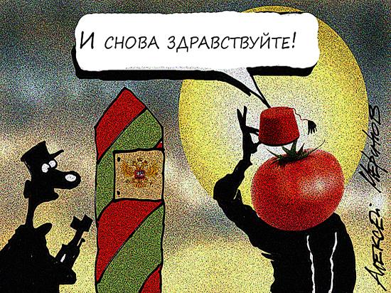 Турецких томатов будет мало: аграрии назвали срок, когда помидоры подешевеют