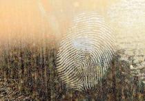 В Удмуртии работник ФСИН выдал свои отпечатки пальцев за бандитские