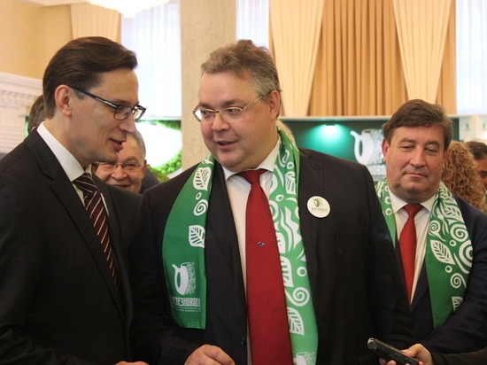 Потенциал Железноводска представили в правительстве Ставропольского края