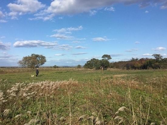 Приморцы постепенно осваивают полученные гектары