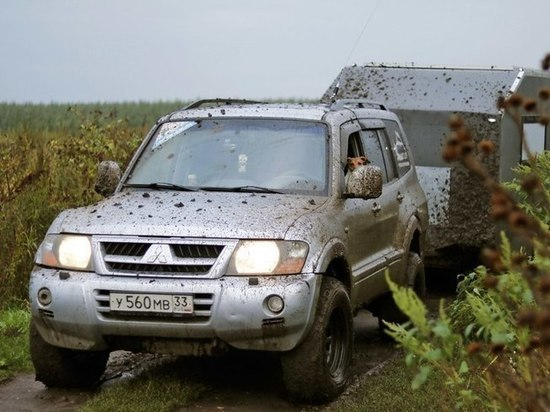 Известный блогер-путешественник на самодельном автодоме проедет через Тамбовскую область