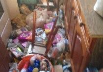 Ужасы нашего городка: в Подольске нашли труп пенсионерки и 40 кошек