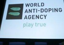 Заседания исполкома и совета учредителей Всемирного антидопингового агентства, которые проходят в Сеуле 15 и 16 ноября, приблизят Россию к Олимпийским играм в Пхенчхане или заставят сделать шаг в другую сторону
