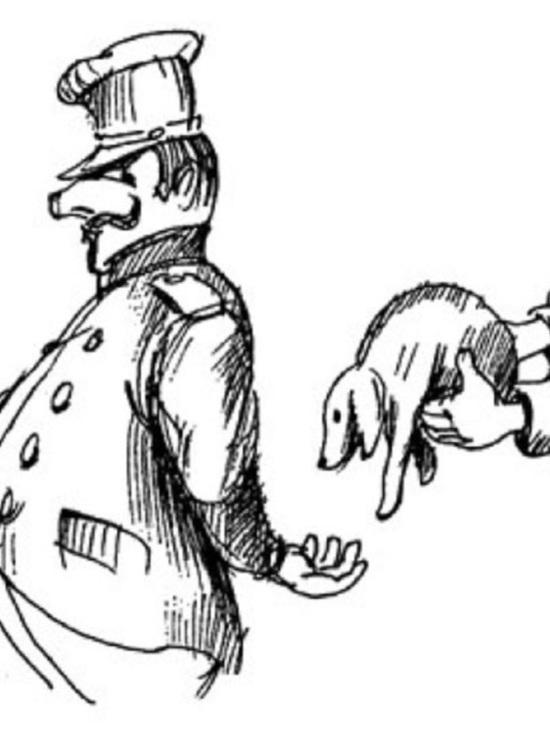 Борзыми щенками или пластиковыми окнами - ивановскому замглавврачу вынесли приговор за взятку