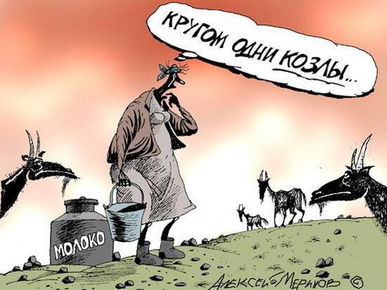 В Воронеже сужают светлое молочное будущее