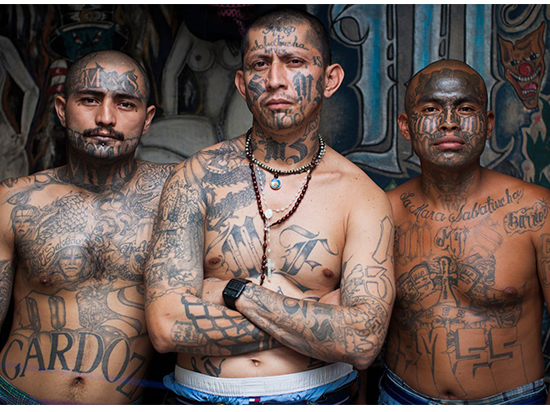 Задержаны 267 членов преступной группировки MS-13