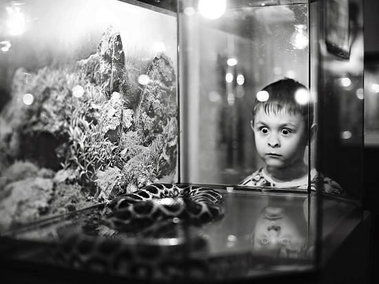 Фотоклуб Юрия Рубинского стал крупнейшей учебно-творческой площадкой в Ставрополе