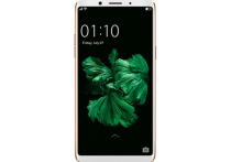 Oppo входит в пятёрку самых популярных производителей смартфонов в мире, и это самый востребованный бренд на родине, в Китае