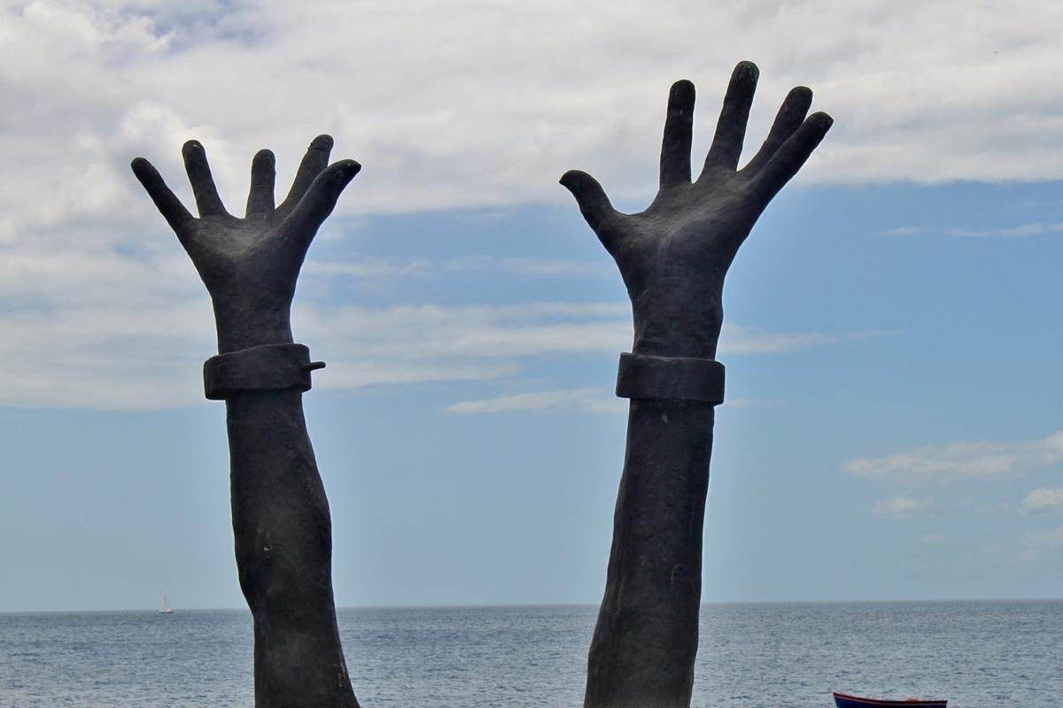 Нигеры выбирают белых рабынь 15
