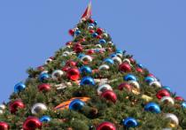 Рекордсменом по количеству новогодних елей в муниципальных образованиях Подмосковья к концу года обещает стать Подольск — его улицы украсит сразу 61 зеленая красавица
