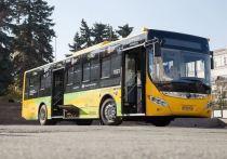 «Дорогое удовольствие». Власти Челябинска не планируют покупать электробус
