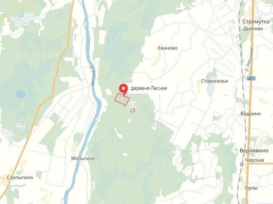 В Псковской области проверят, загрязнена ли Великая мышьяком и ртутью