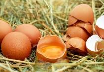 Идеальным яйцам разрешили пахнуть холодильником