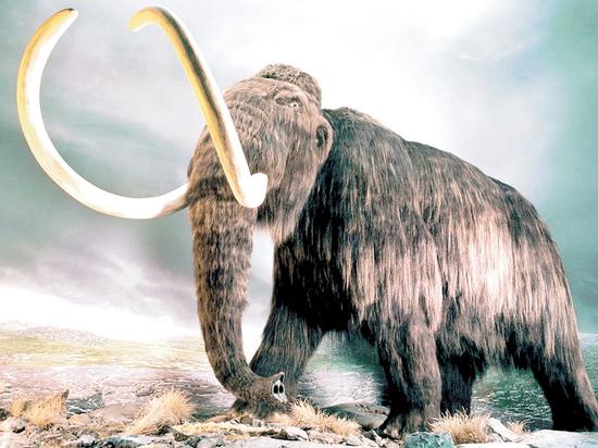 Секс мамонт