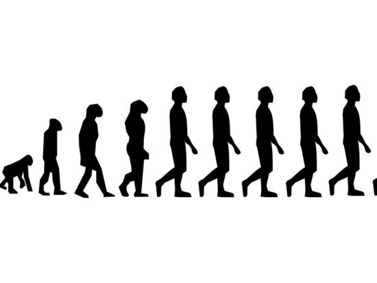Человечество как вид достигло пика своих возможностей, заявили биологи