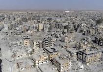 Россия «присвоила» себе победу над террористами в Сирии