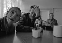 Ученые выявили регионы в России, где наблюдается самый высокий процент больных психическими расстройствами, связанными с распадом процессов мышления и эмоциональных реакций, а проще - шизофренией
