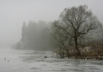 Рыбаков просят не выходить на лед в аномальную оттепель