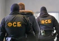"""ЦОС ФСБ сообщил, что в Санкт-Петербурге была выявление ячейка запрещенной в России террористической организации """"Исламское государство"""", которая планировала осуществить кровавый теракт"""