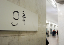 Неизвестные поклонники саги прицепили самодельную табличку «9 3/4» на станции «Ленинский проспект»