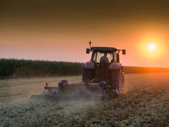 В Оренбужье за 10 лет в два раза уменьшилось число сельхозорганизаций