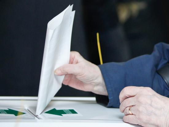 Фиговый листочек бюллетеня: как будет выглядеть список кандидатов в президенты