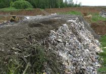 Закрытый по поручению президента полигон «Кучино» в подмосковной Балашихе больше не будет источником зловония и распространения токсических веществ