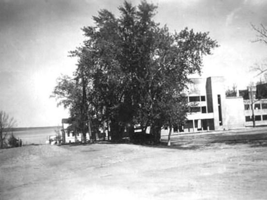 Три дома Карельской филармонии. Часть первая