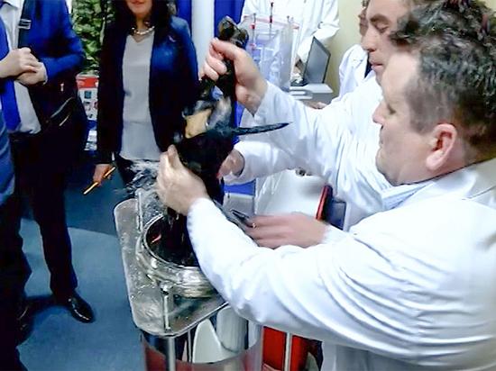 Рогозин скрыл секрет: технология «утопленной таксы» была опробована на людях