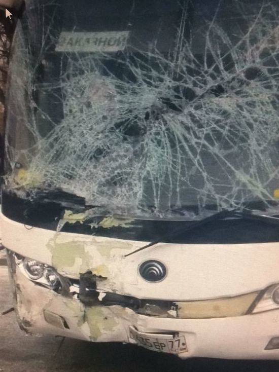 «Ремни вырвало с корнем»: подробности крушения автобуса с детьми