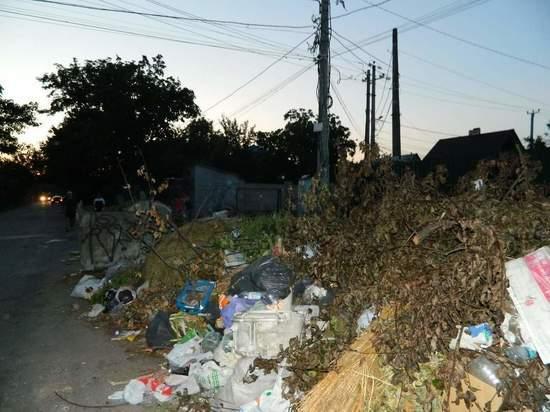 Накануне президентских выборов Свердловская область может утонуть в мусоре